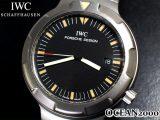 IWC IW3504